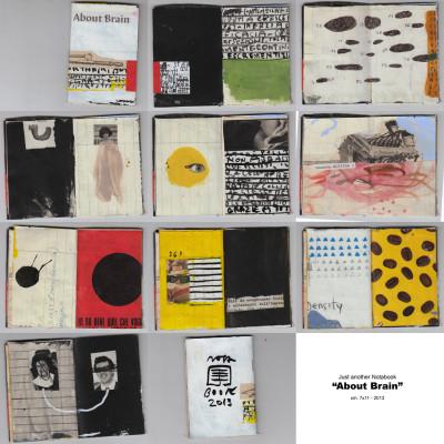 About brain - notabook - 2013